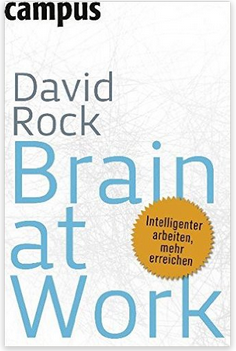 Coaching Brain at Work David Rock Buch