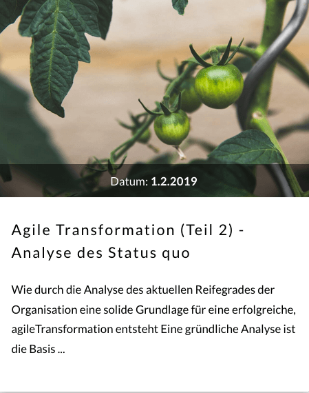 agile_Transformation2