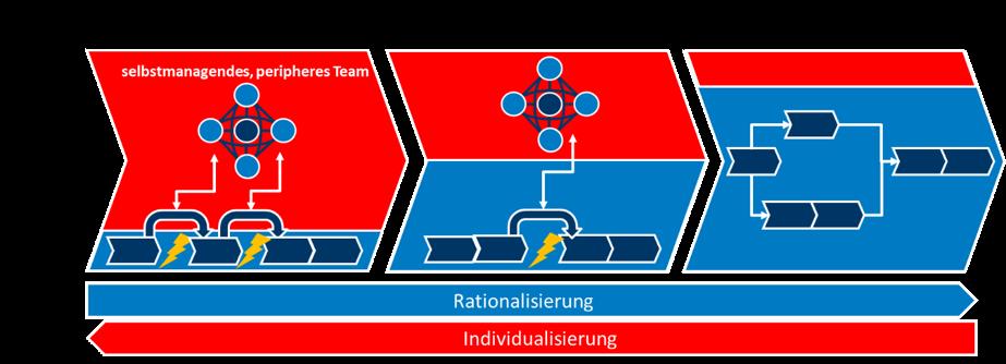 Kranke Organisation 7 Duale Prozessgestaltung rot blau.png