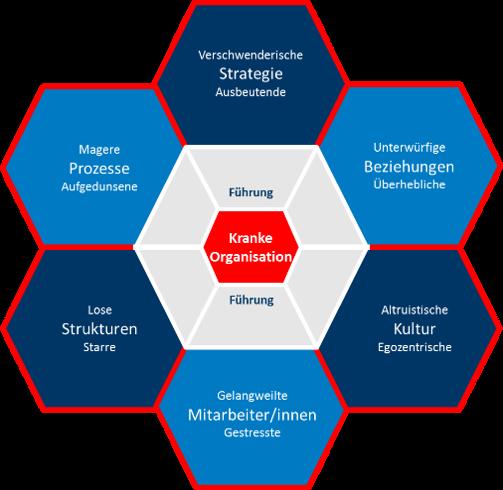 Kranke Organisation Wabenmodell Struktur Kultur 6