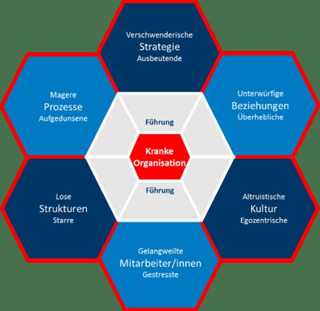 Kranke Organisation Prozesse Wabenmodell 7