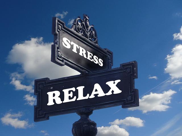 Workshop Gesunde Organisation Stress abbauen