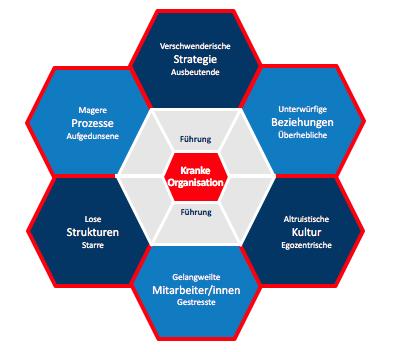 Kranke Organisation Wabenmodell Strategie Prozess Beziehung Mitarbeiter Kultur Strukturen