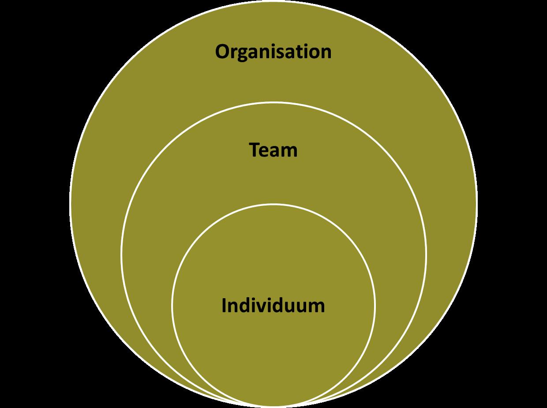 Organisationale Energie Individuum Team Organisation Kreismodell .png