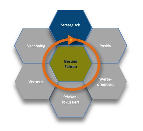 Gesunde Organisation Strategisch Fuehren Wabenmodell