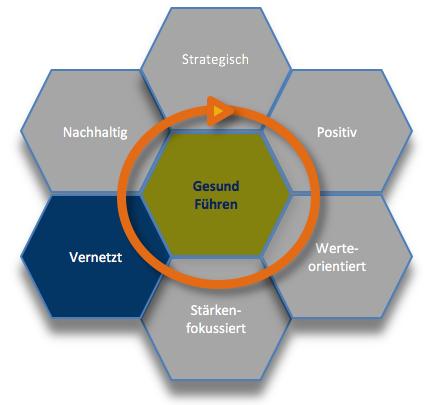 Gesunde Organisation Gesund Führen Wabenmodell vernetzt 6.png